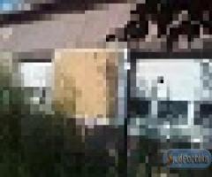 Dunaszekcsőn telekáron családi ház eladó