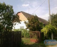 Domaszéki tanya eladó